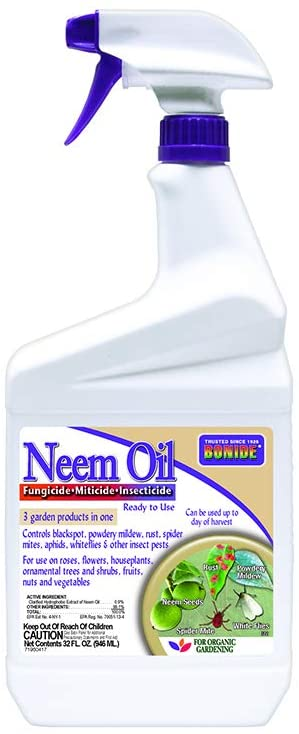 Insect Pesticide (Neem oil)