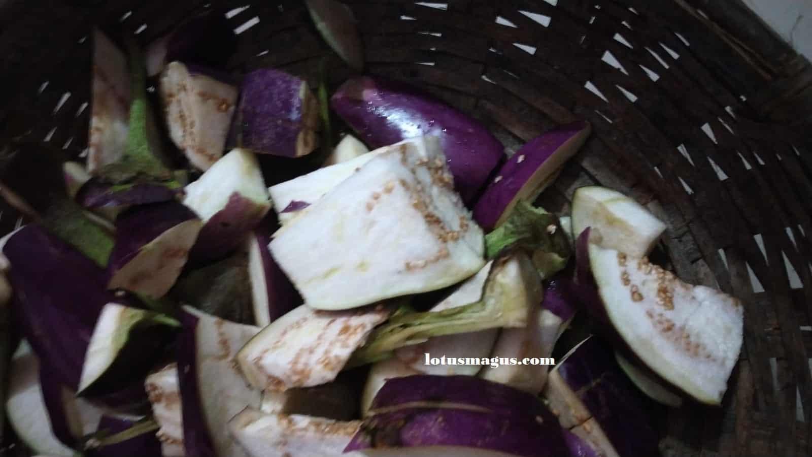 How do I know if my eggplant has gone bad